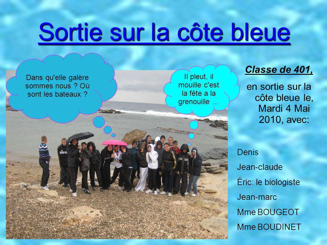 Sortie sur la côte bleue Classe de 401, en sortie sur la côte bleue le, Mardi 4 Mai 2010, avec: Denis Jean-claude Éric: le biologiste Jean-marc Mme BOUGEOT Mme BOUDINET Dans qu elle galère sommes nous .