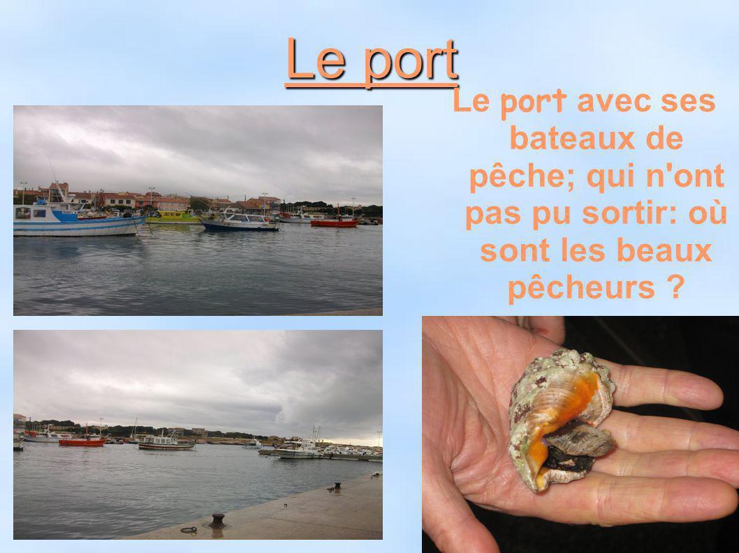 Le port Le port avec ses bateaux de pêche; qui n ont pas pu sortir: où sont les beaux pêcheurs