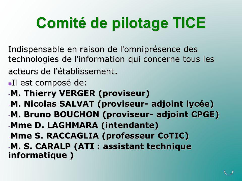 Comité de pilotage TICE Indispensable en raison de lomniprésence des technologies de linformation qui concerne tous les acteurs de létablissement. Il