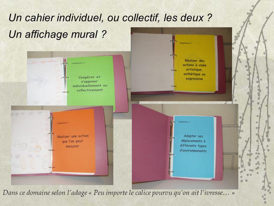 Un cahier individuel, ou collectif, les deux ? Un affichage mural ? Dans ce domaine selon ladage « Peu importe le calice pourvu quon ait livresse… »