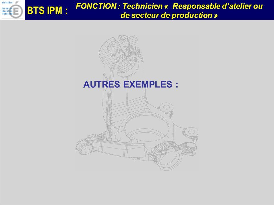 BTS IPM : FONCTION : Technicien « Responsable datelier ou de secteur de production » AUTRES EXEMPLES :