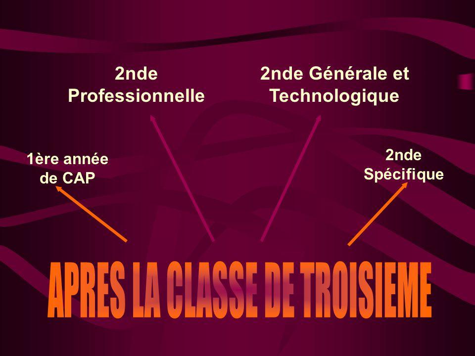 1ère année de CAP 2nde Spécifique 2nde Professionnelle 2nde Générale et Technologique