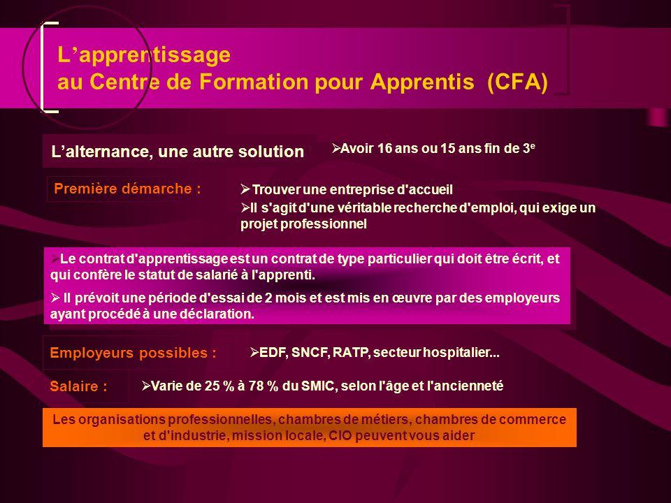 Lalternance, une autre solution Avoir 16 ans ou 15 ans fin de 3 e EDF, SNCF, RATP, secteur hospitalier... Première démarche : Il s'agit d'une véritabl