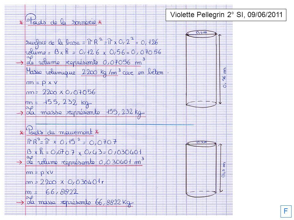 F Violette Pellegrin 2° SI, 09/06/2011
