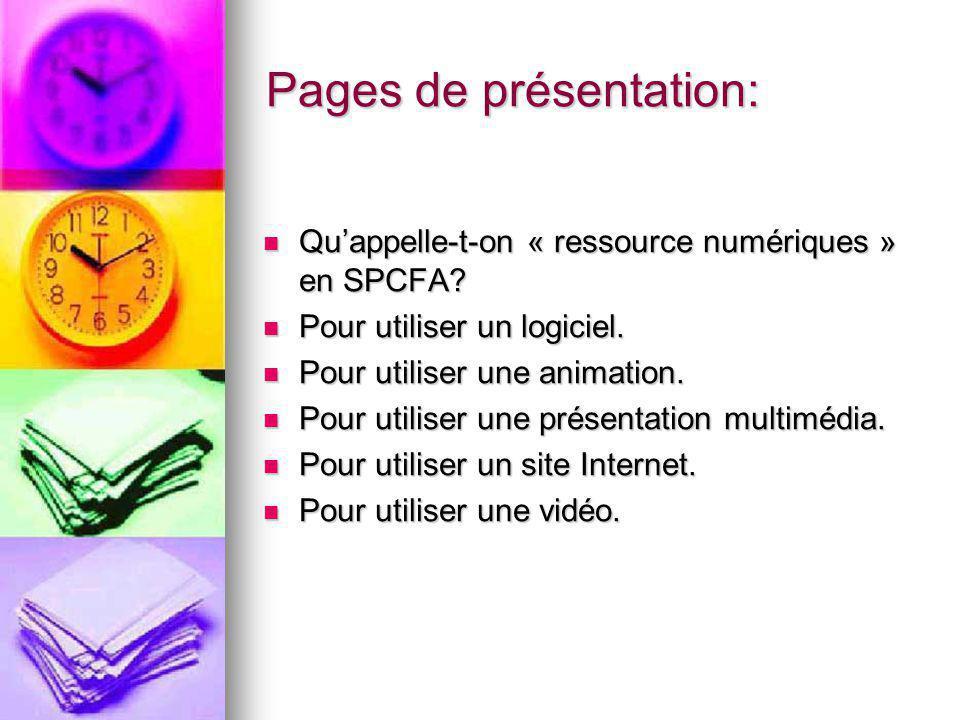 Pages de présentation: Quappelle-t-on « ressource numériques » en SPCFA.