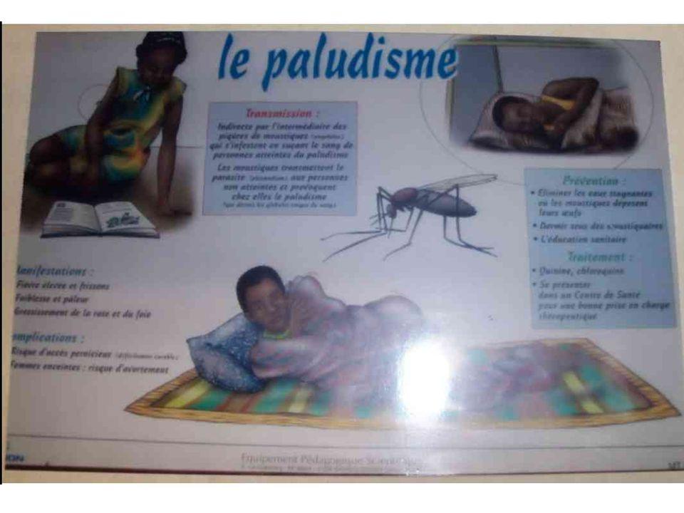 La santé au Sénégal Le budget consacré aux dépenses de santé au Sénégal a triplé entre 1980 et 2000. Les Sénégalais se portent mieux et vivent plus lo