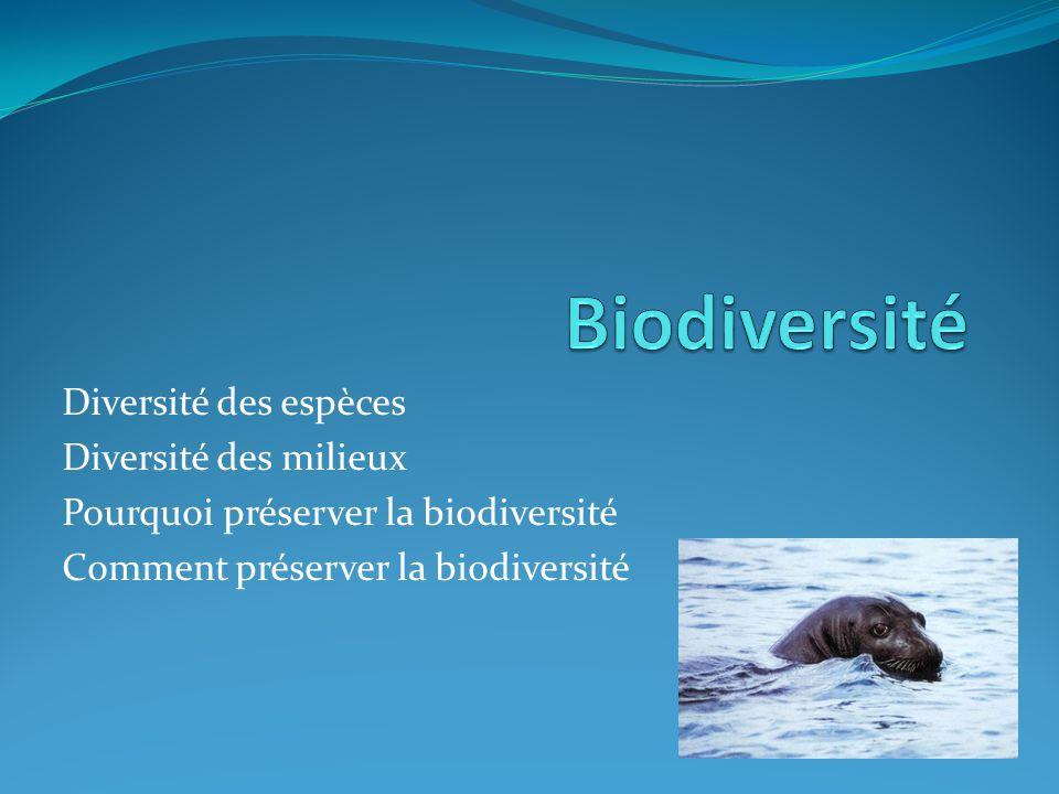 Diversité des espèces Diversité des milieux Pourquoi préserver la biodiversité Comment préserver la biodiversité