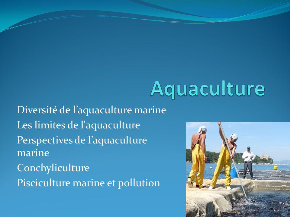 Diversité de laquaculture marine Les limites de l aquaculture Perspectives de laquaculture marine Conchyliculture Pisciculture marine et pollution