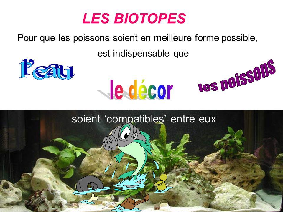 LES BIOTOPES Pour que les poissons soient en meilleure forme possible, soient compatibles entre eux il est indispensable que