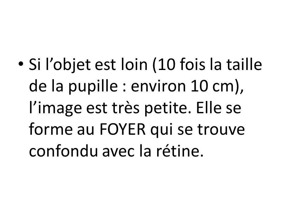 Si lobjet est loin (10 fois la taille de la pupille : environ 10 cm), limage est très petite. Elle se forme au FOYER qui se trouve confondu avec la ré