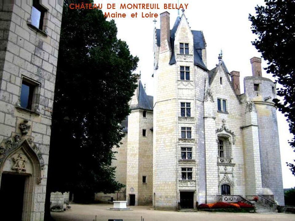 CHÂTEAU DE MONTSOREAU Maine et Loire