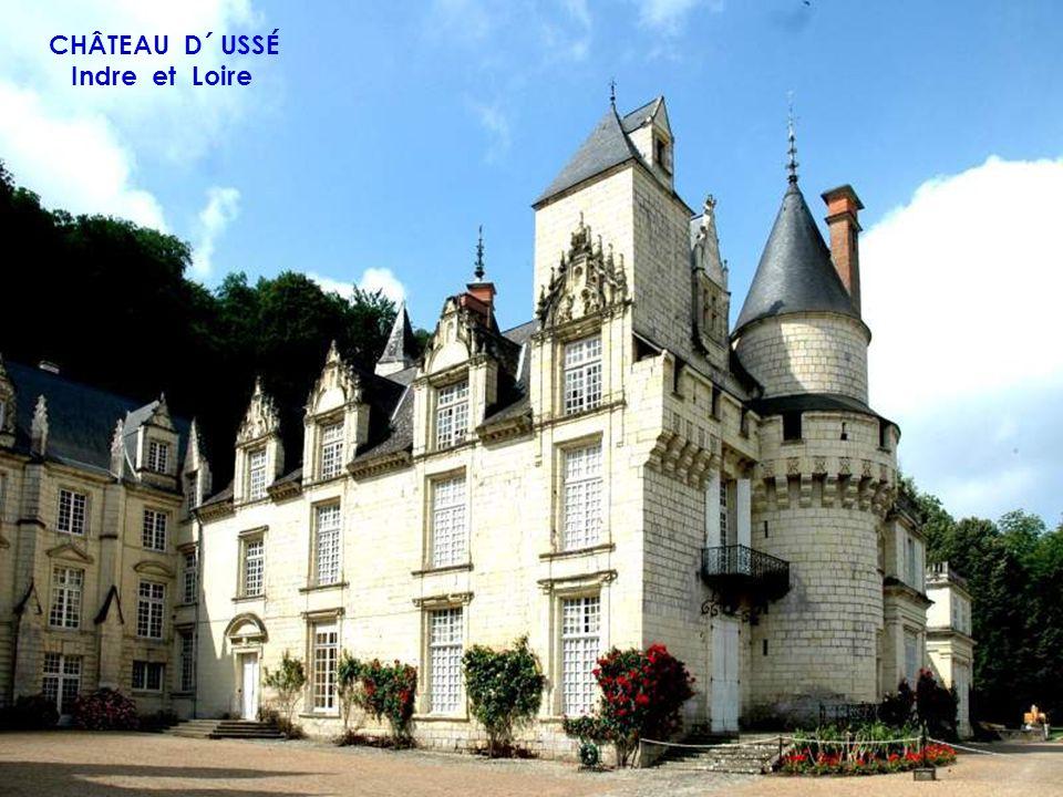 CHÂTEAU DE GIEN Loiret