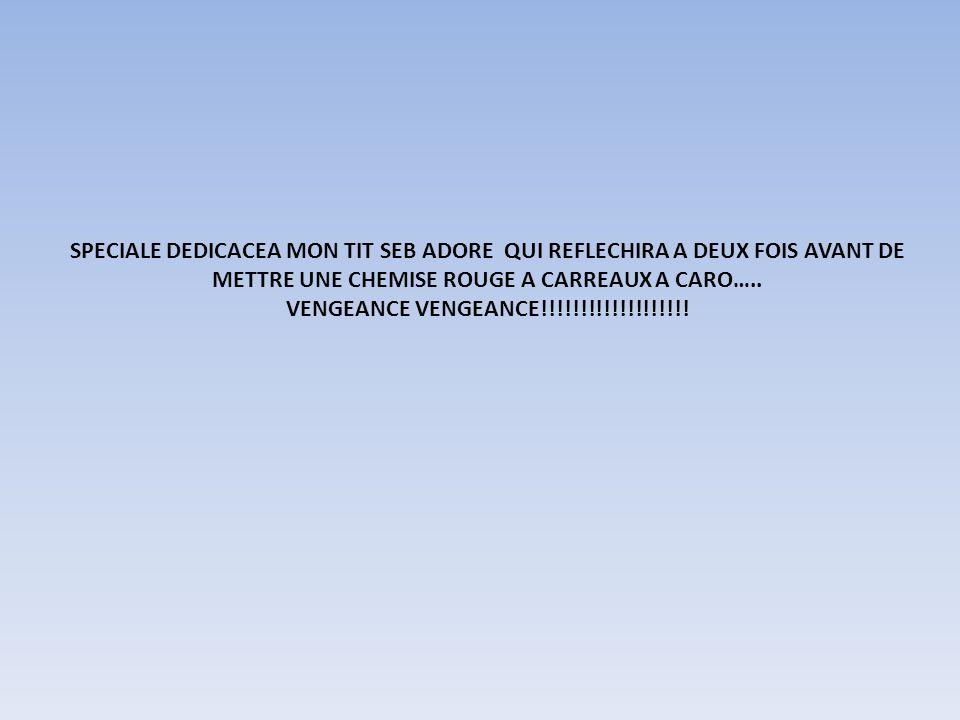 SPECIALE DEDICACEA MON TIT SEB ADORE QUI REFLECHIRA A DEUX FOIS AVANT DE METTRE UNE CHEMISE ROUGE A CARREAUX A CARO….. VENGEANCE VENGEANCE!!!!!!!!!!!!
