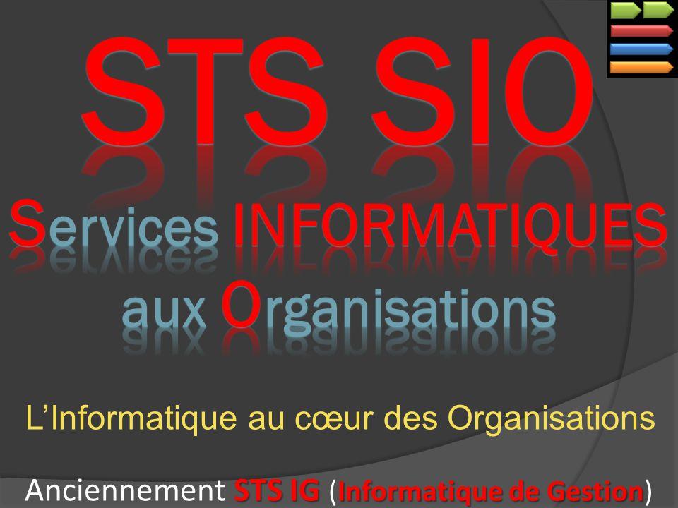 LInformatique au cœur des Organisations STS IG Informatique de Gestion Anciennement STS IG (Informatique de Gestion)