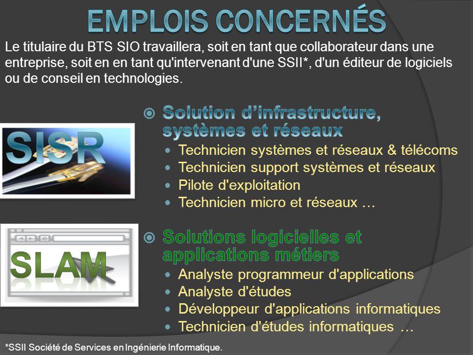 Le titulaire du BTS SIO travaillera, soit en tant que collaborateur dans une entreprise, soit en en tant qu'intervenant d'une SSII*, d'un éditeur de l