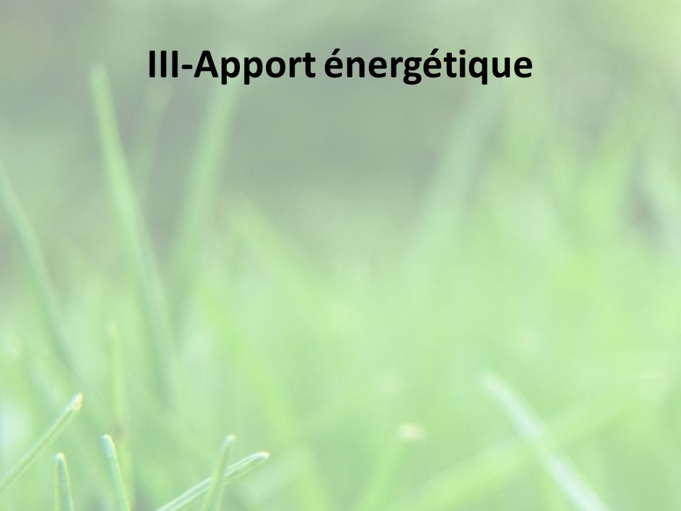III-Apport énergétique