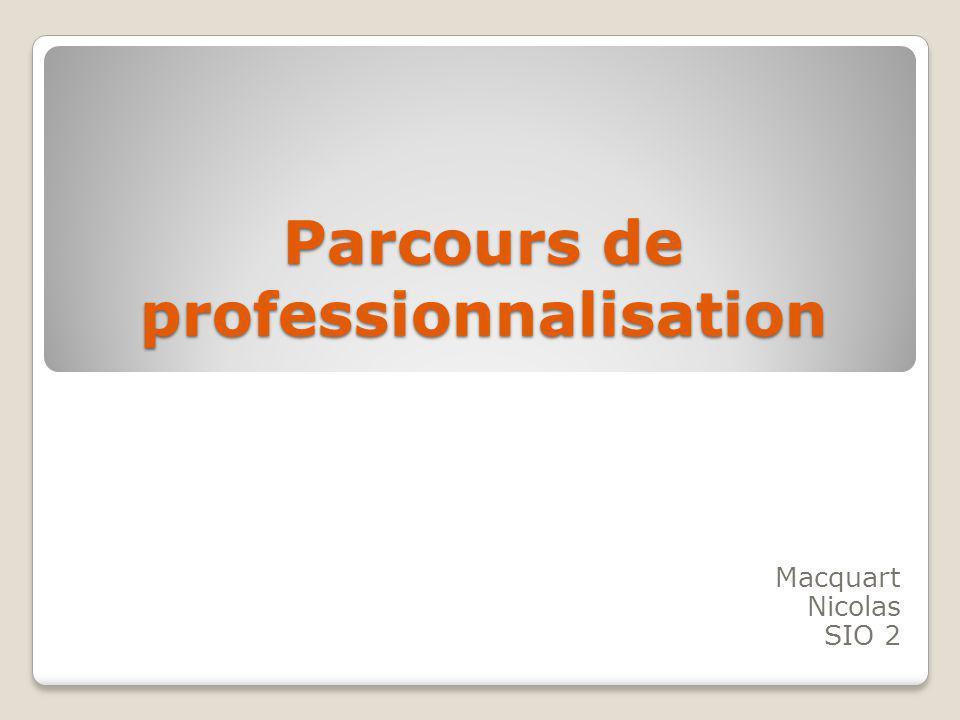 Parcours de professionnalisation Macquart Nicolas SIO 2