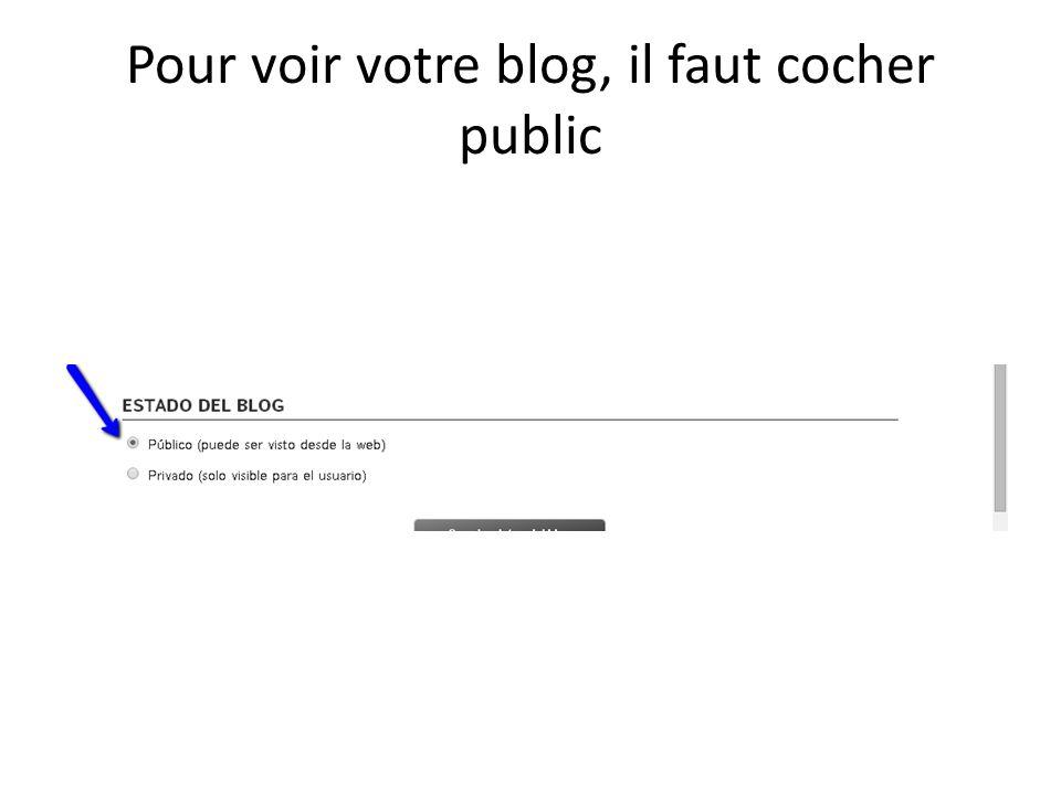 Pour voir votre blog, il faut cocher public