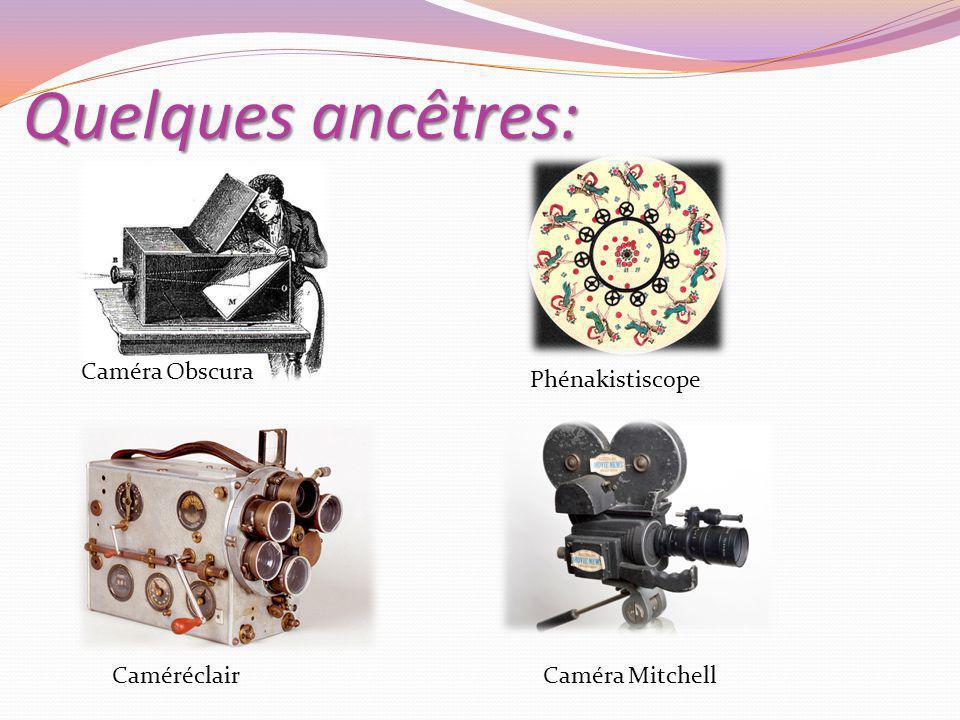 Quelques ancêtres: Caméra Obscura Phénakistiscope CaméréclairCaméra Mitchell