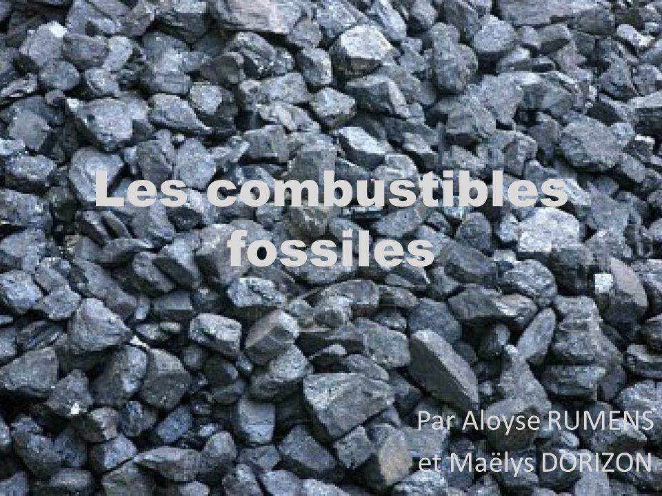 Les combustibles fossiles Par Aloyse RUMENS et Maëlys DORIZON