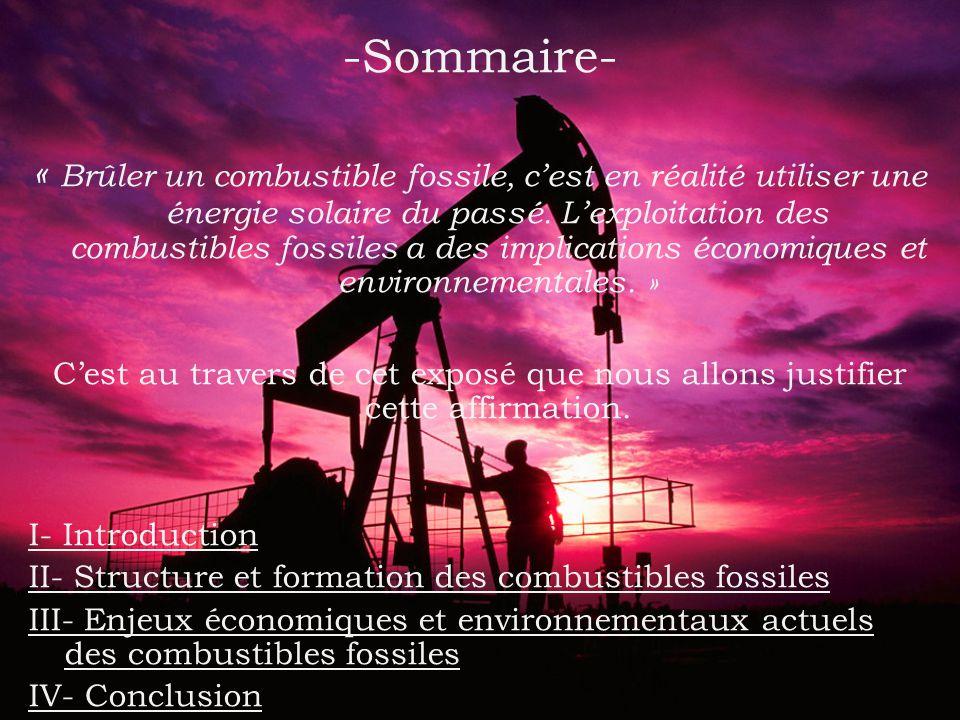 -Sommaire- « Brûler un combustible fossile, cest en réalité utiliser une énergie solaire du passé.