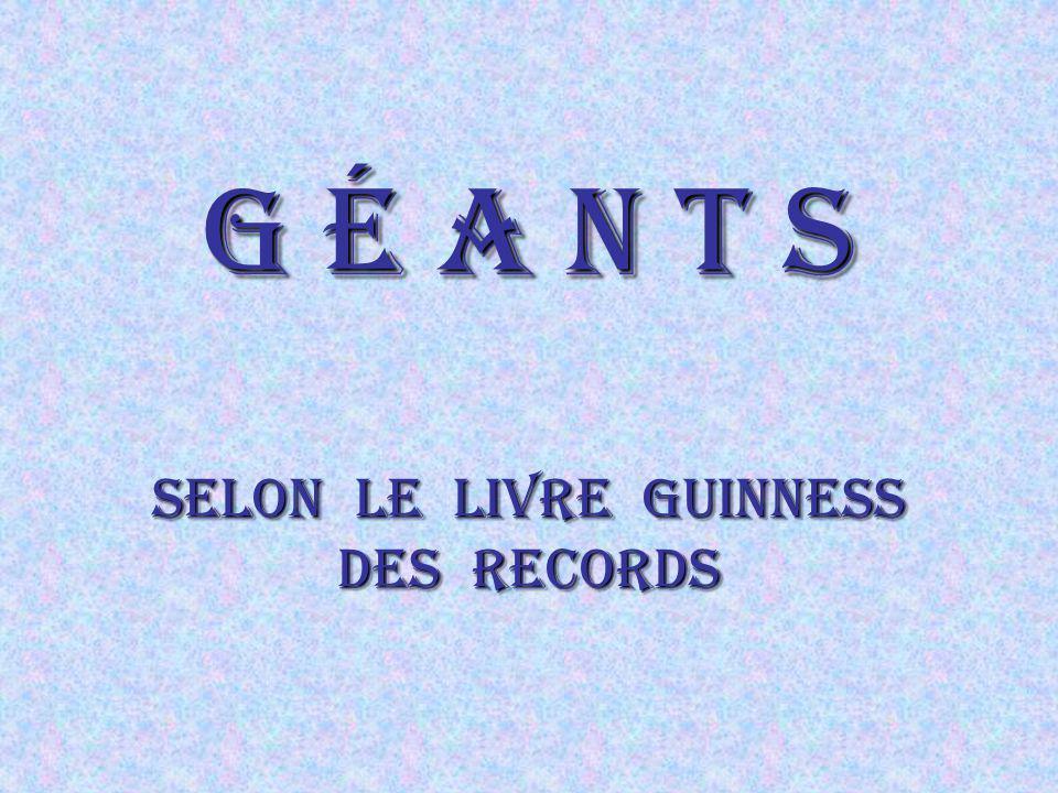 G é a n t s Selon le Livre guinness des records