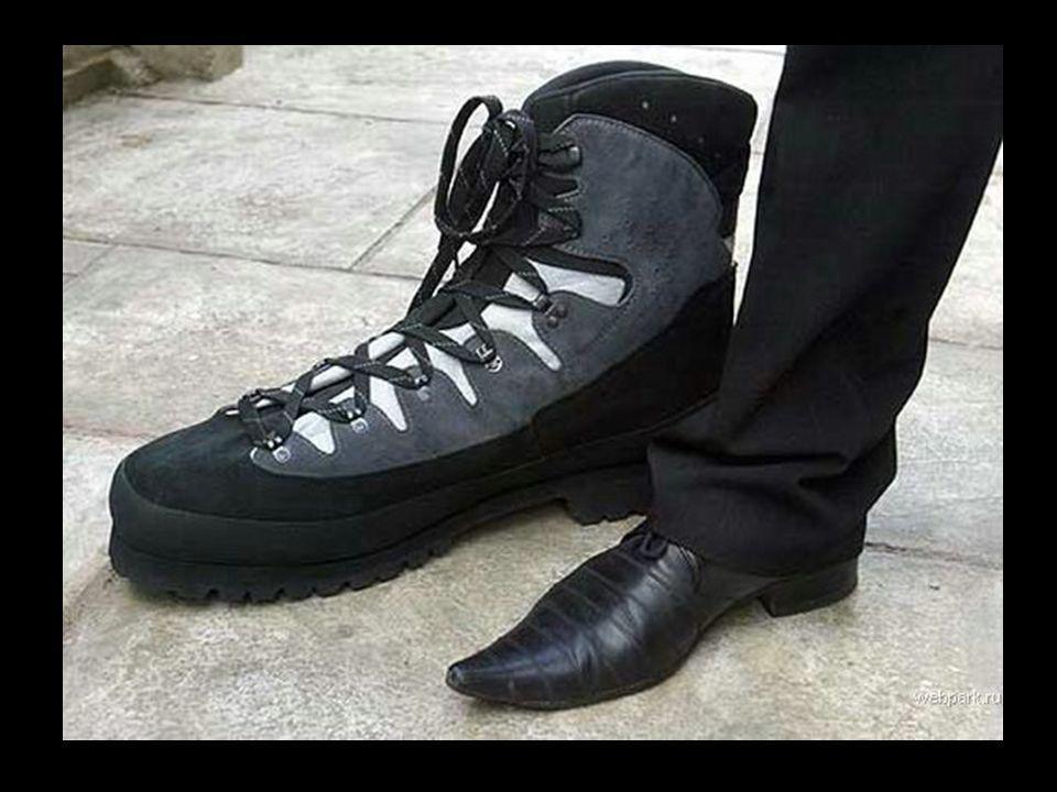 Pointure de ses chaussures : 64