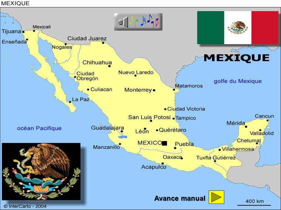 Catedral México DF