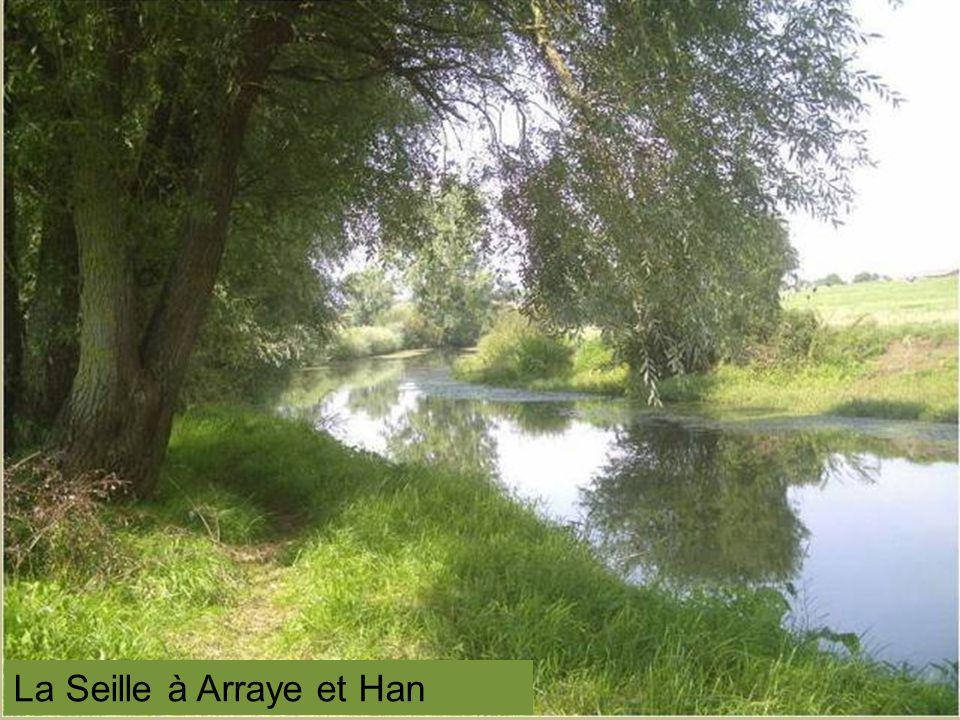 Longwy - puits