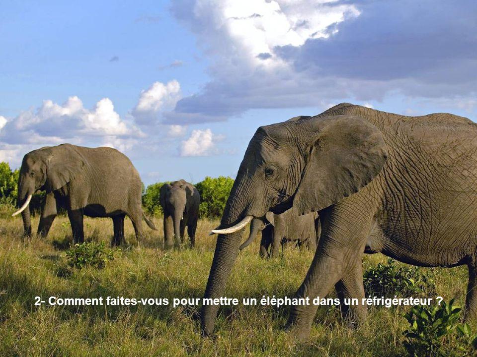 2- Comment faites-vous pour mettre un éléphant dans un réfrigérateur ?