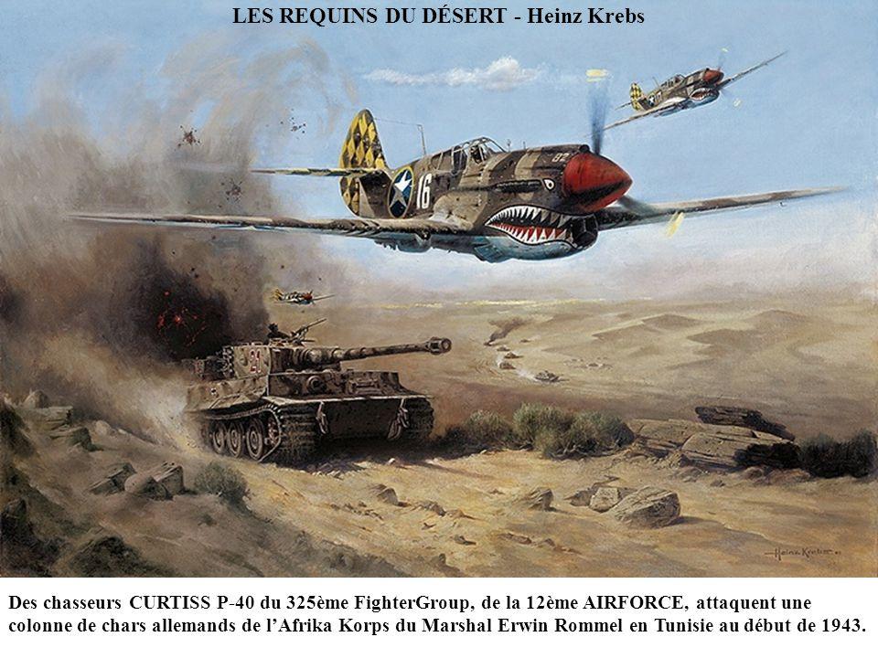 FW190 STURMGRUPPE FORMATION (detail) - John Wallin Liberto Le Lieutenant-colonel Walther Dahl dans son FW190 « 13 bleu » menant les FW190s du JABO GRU