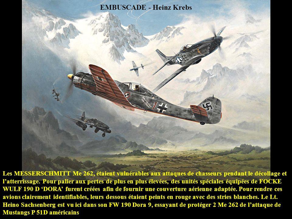 MISSION ACCOMPLIE - Roy Grinnell 18 AVRIL 1943 - Une embuscade de 16 chasseurs P-38 LIGHTNING conduit le Lt. REX BARBER à abattre un bombardier japona