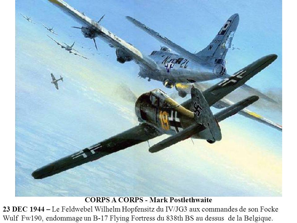LES DERNIERES FORCES - Gareth Hector 1945 - Focke-Wulf Fw 190D-9 du JG-26 squadron tentant désespérément dintercepter des B-24 liberators très haut au