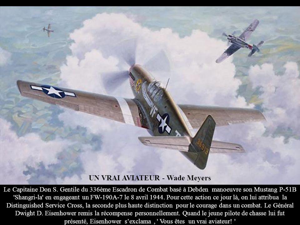 VUE SUR LES REQUINS - John D. Shaw 1942 – KUNMING - CHINE. Avant que les pilotes du 1er Groupe des Volontaires américains légendaires ' les Tigres Vol