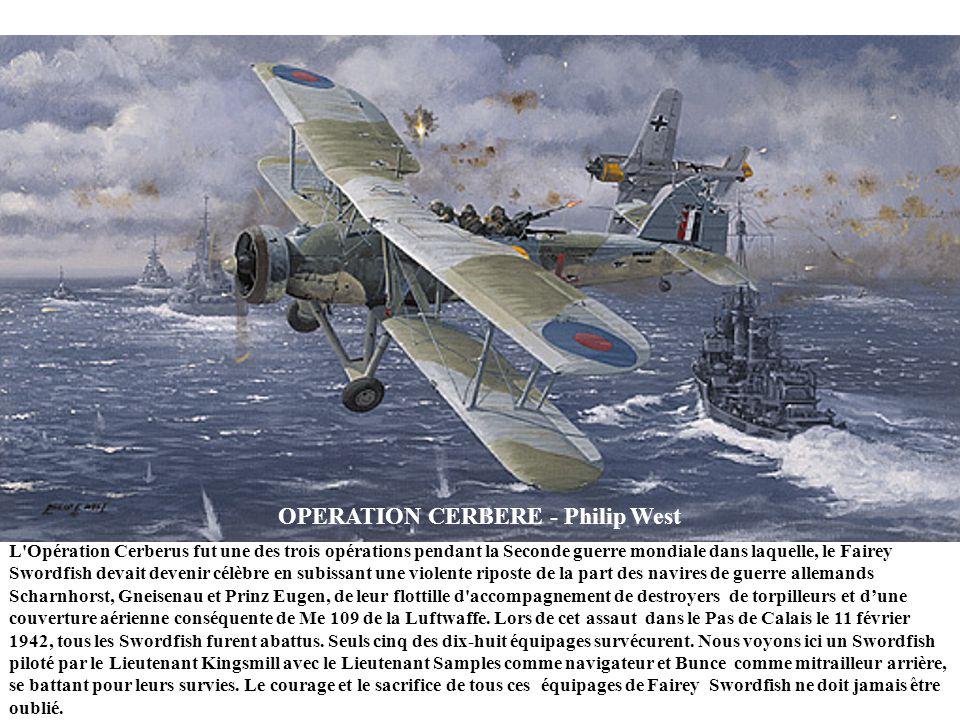 DAVID ET GOLIATH – Roberto Zanella JUIN 1943 – Un Macchi MC205 Veltro (lévrier) italien de lescadron 'Ace of Wands (les as à la baguette magique) abat
