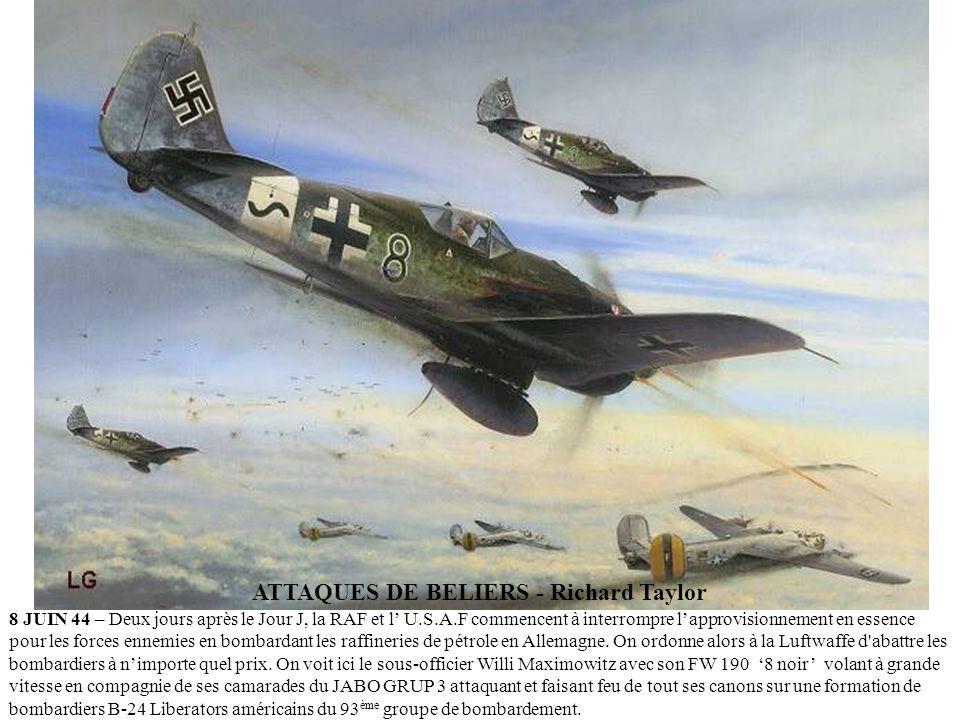 VOLER LE JOUR J (D-DAY) – Julien Lepelletier 6 JUIN 1944 - OPERATION OVERLORD - Un Republic P-47D Thunderbolt vole au dessus dUtah Beach pour une miss