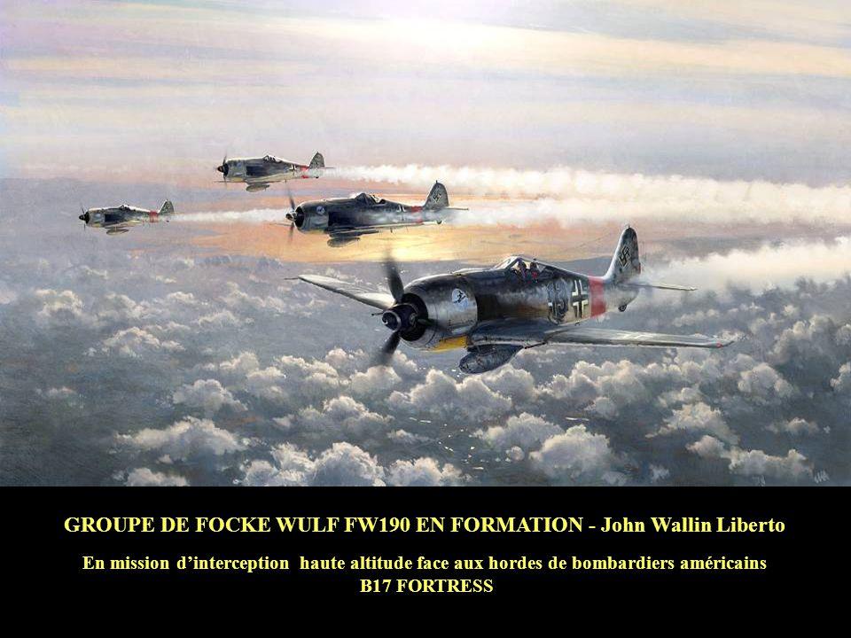 GROUPE DE FOCKE WULF FW190 EN FORMATION - John Wallin Liberto En mission dinterception haute altitude face aux hordes de bombardiers américains B17 FORTRESS