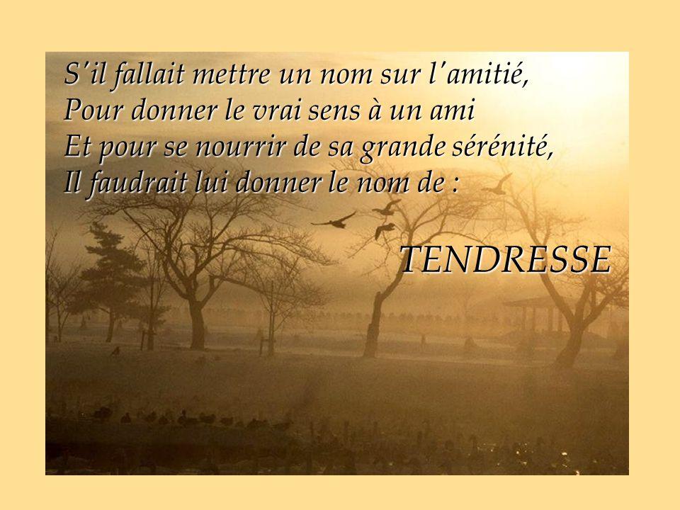 S il fallait mettre un nom sur l amitié, Pour donner le vrai sens à un ami Et pour se nourrir de sa grande sérénité, Il faudrait lui donner le nom de : TENDRESSE