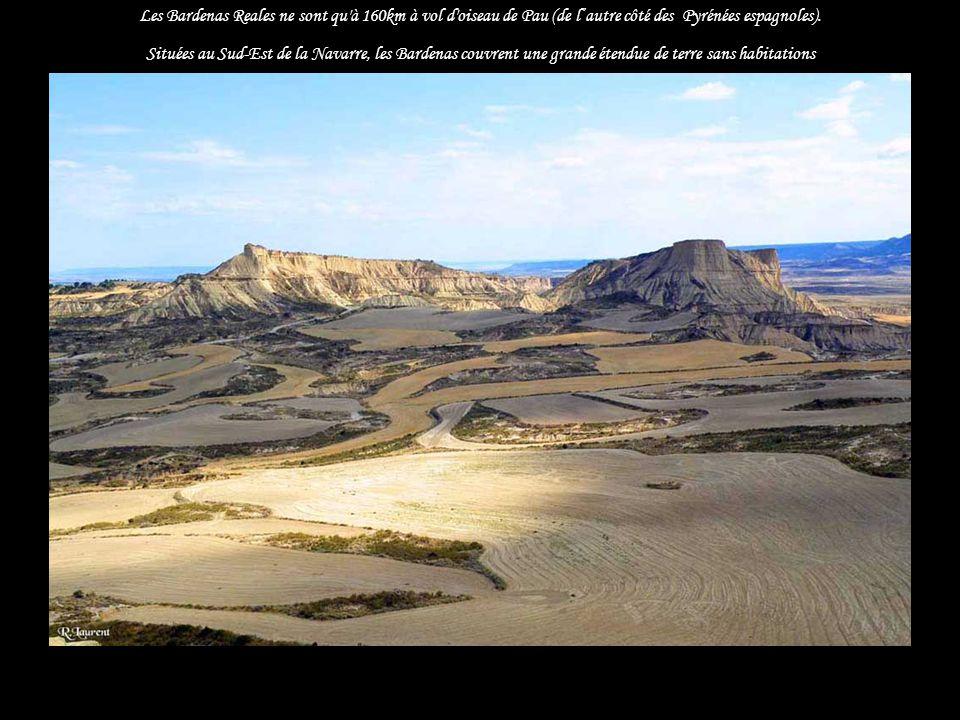 Un petit bout de désert, aride...