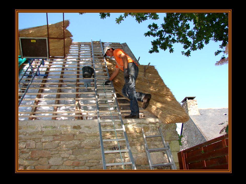 Il existe différentes techniques de pose. Ici le chaumier choisit la technique de pose verticale, cad une progression du bas du toit vers le haut, par