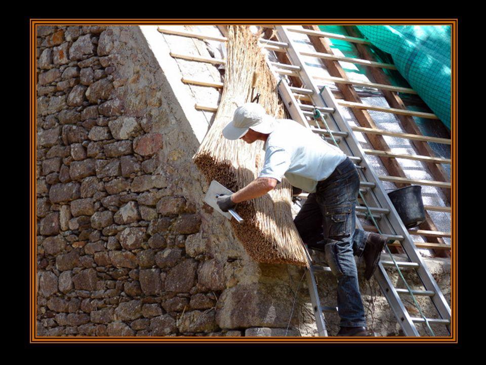 A l'aide d'un racloir métallique, le chaumier peigne longuement le roseau. Même les bords doivent être d'une régularité impeccable.