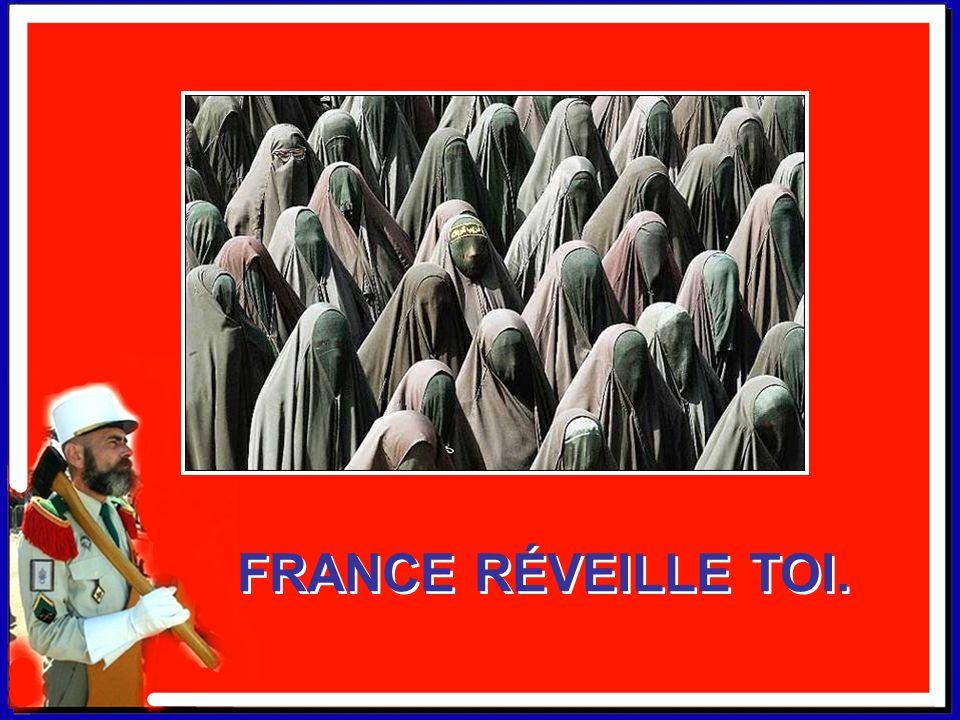 FAITES DONNER LA LÉGION. FAITES DONNER LA LÉGION. Ma France c'est un bistrot où coule le ptit rouge. Ma France n'a qu'un drapeau et il est bleu, blanc