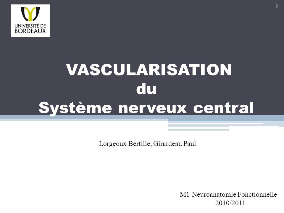 VASCULARISATION du Système nerveux central M1-Neuroanatomie Fonctionnelle 2010/2011 Lorgeoux Bertille, Girardeau Paul 1