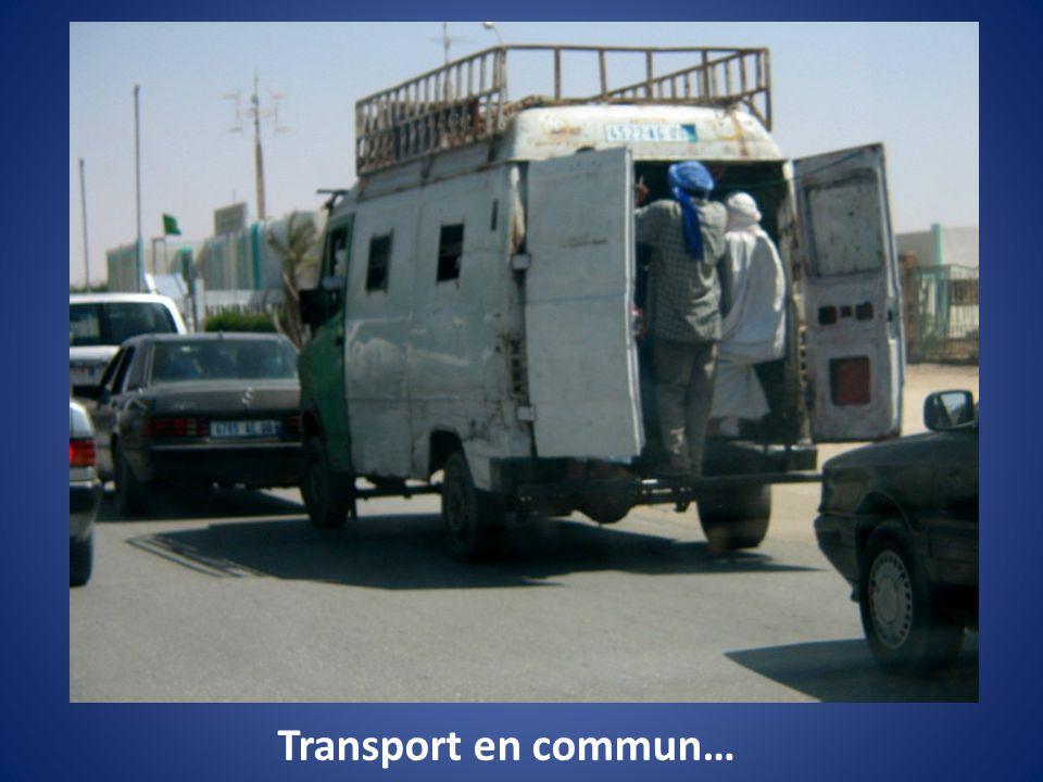 Transport en commun…