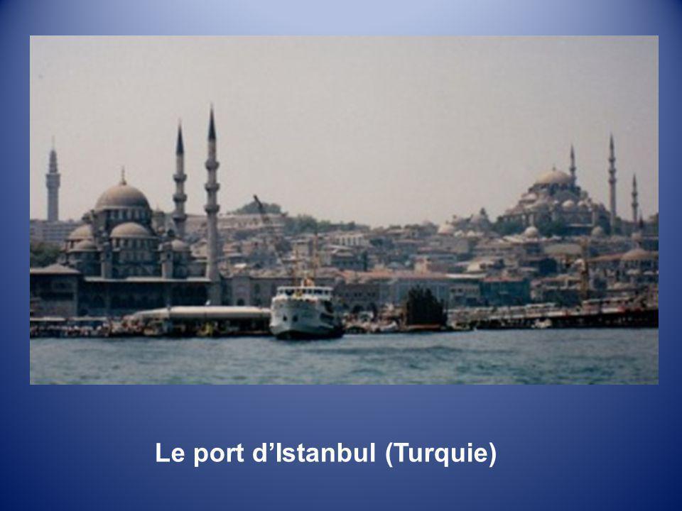 SOUVENIRS dASIE 2 LAsie Mineure: La Turquie Musique et défilement automatiques