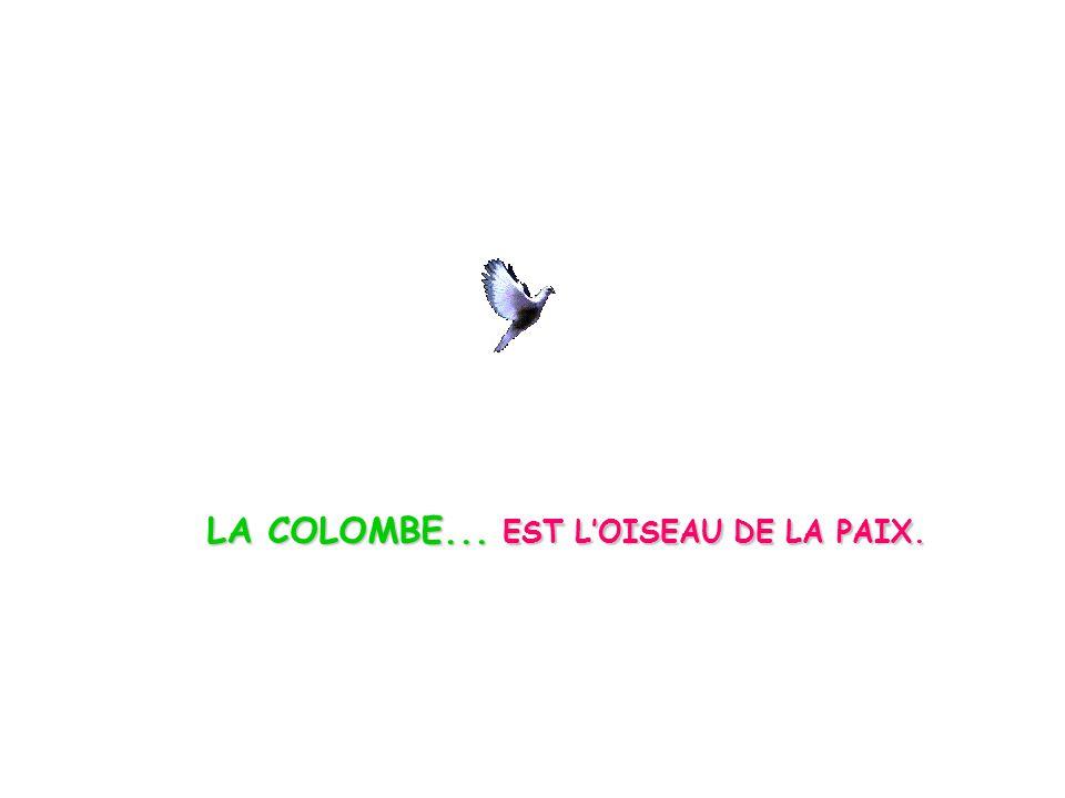 LA COLOMBE... EST LOISEAU DE LA PAIX.
