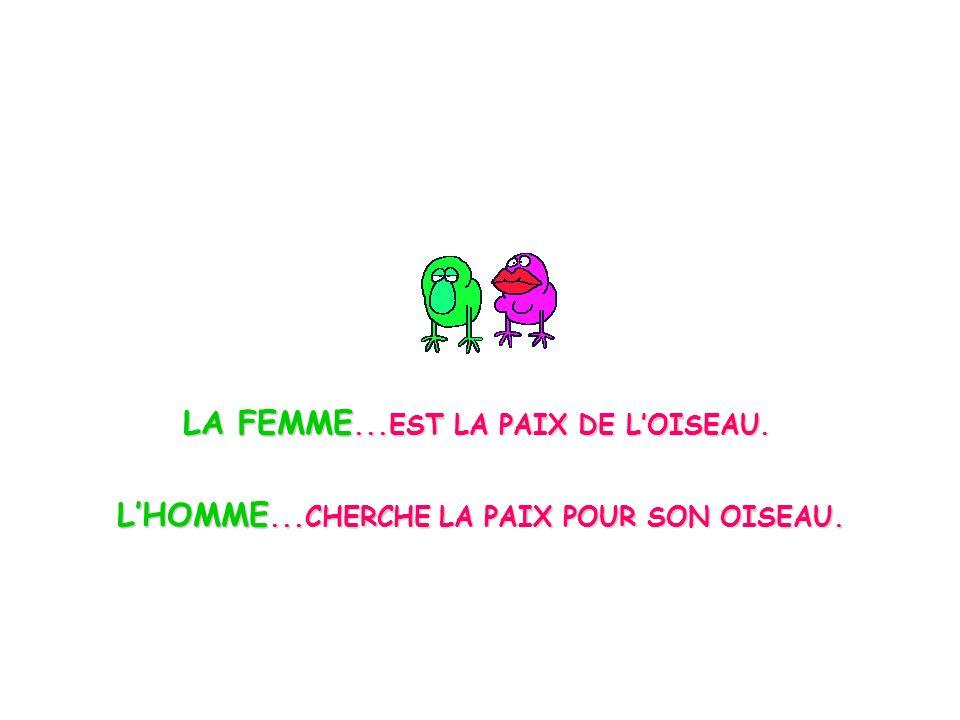 LA FEMME...EST LA PAIX DE LOISEAU. LHOMME...CHERCHE LA PAIX POUR SON OISEAU.