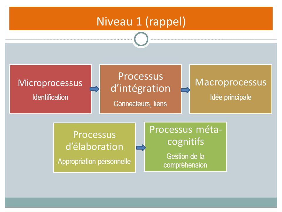 Niveau 1 (rappel) Microprocessus Identification Processus dintégration Connecteurs, liens Macroprocessus Idée principale Processus délaboration Approp