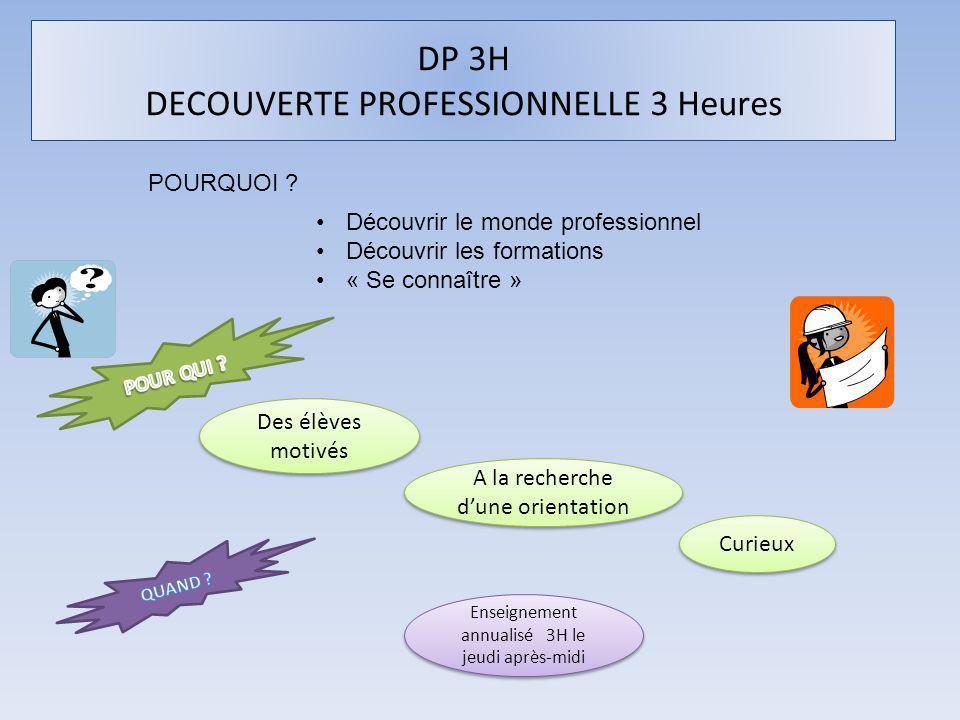 DP 3H DECOUVERTE PROFESSIONNELLE 3 Heures POURQUOI .