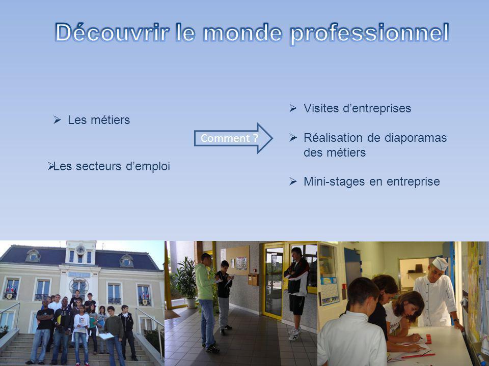 Les secteurs demploi Visites dentreprises Réalisation de diaporamas des métiers Mini-stages en entreprise Les métiers Comment ?